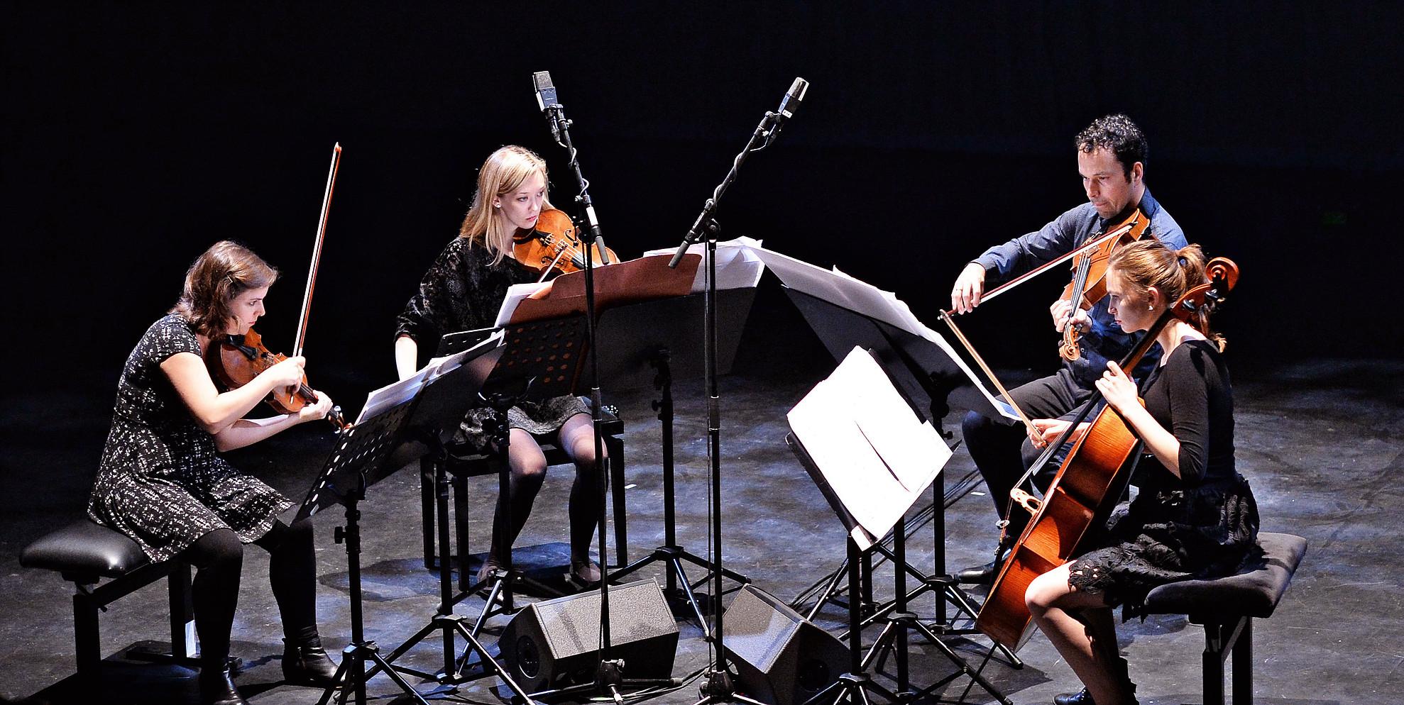 2017 Ensembles in Residence / Solistas & Conjuntos de Residencia